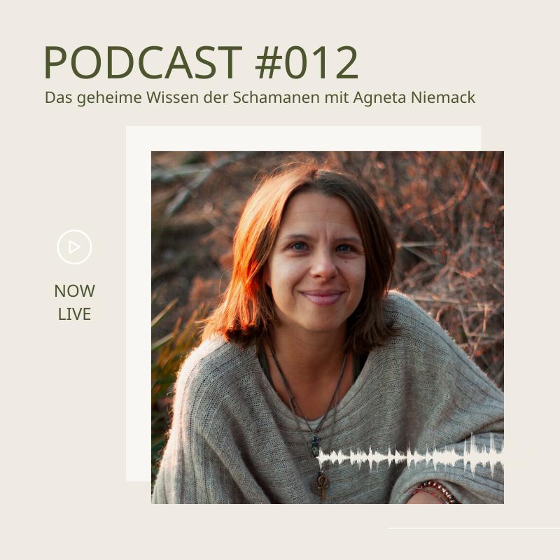Das geheime Wissen der Schamanen: Wie Schamanen uns bei Heilungsprozessen unterstützen können mit Agneta Niemack.
